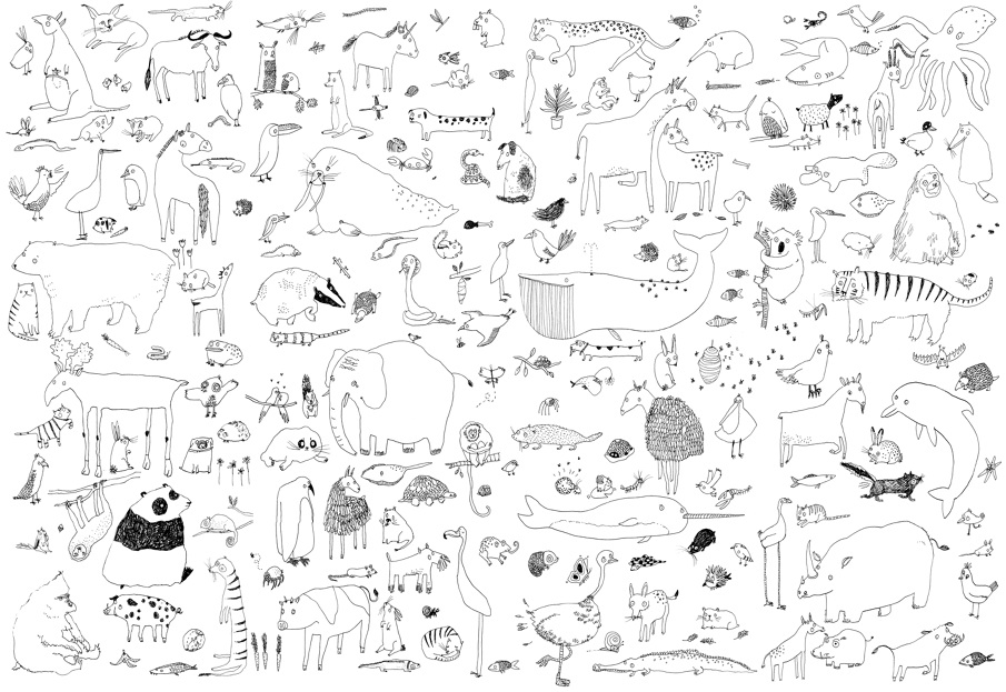 animal colouring in poster lorna scobie illustration